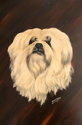 Vintage Oil Portrait Painting of a Fluffy White Dog - Maltese? By DK Dennis