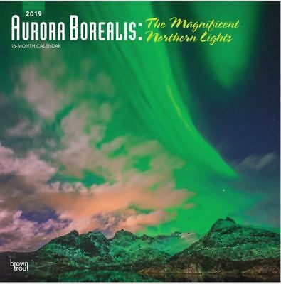 2019 Aurora Borealis Northern Lights Wall Calendar 12x12 by BrownTrout