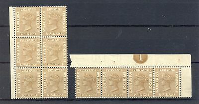 SIERRA LEONE 1884 SG# 33 -( 10 x ) -- MNH VF ** RARE IN THIS CONDITION !!