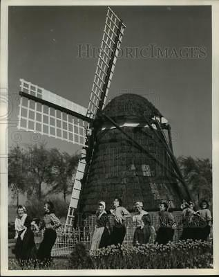 1976 Press Photo windmill at tulip time festival in Holland, Michigan