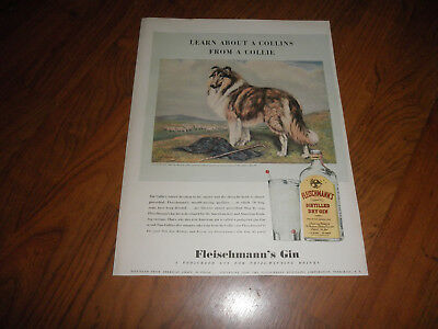 Vintage Fleischmanns's Gin COLLIE AD-Learn About a Collins From A COLLIE-1940