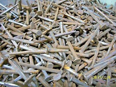 "100+ Orig. Antique, 1 3/8"" Long, Square Steel Nails, Great Maine Barn Find !"