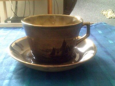 Vintage Ridgways Royal Vistas Ware From Paintings By Famous Artist Cup & Saucer