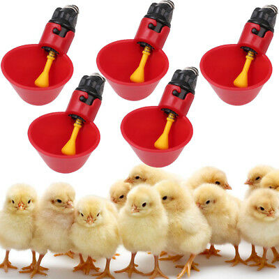 5 Pack Poultry Water Drinking Cups Chicken Hen Quail Automatic Waterer Drinker -