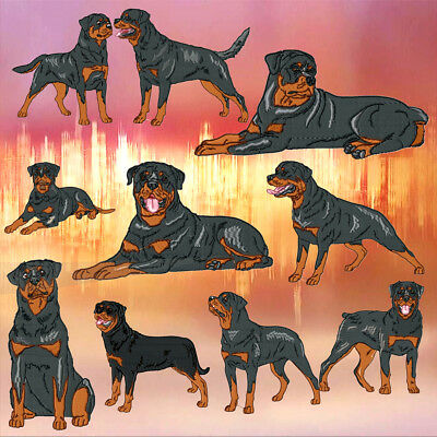 Realistic Rottweiler 10 Machine Embroidery Designs 5 Sizes Included