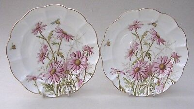 Two George Jones Crescent China Plates - Pink Daisies And Bees - C. 1910