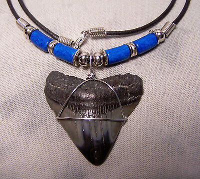 """Big  1 11/16"""" Megalodon Shark Tooth Teeth Necklace Extinct Fossil Jaw Scuba Dive"""