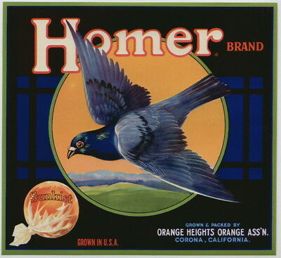 HOMER Vintage Corona Orange Crate Label, Pigeon, w/brd, Bird, AN ORIGINAL LABEL