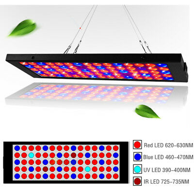 Hydro LED Grow Pflanzenlicht UV IR Full Spectrum Panel Veg Bloom Flower Lamp
