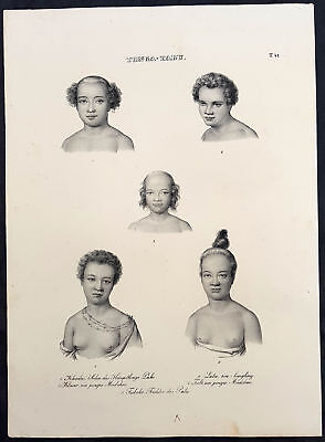 1836 Dumont D Urville & Brodtmann Antique Print The Peoples of the Tonga Islands