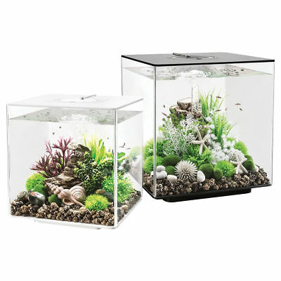 biorb cube mcr 60l aquariums black white clear fish tank filter led