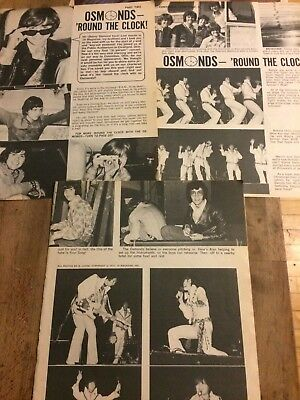 The Osmonds Brothers, Donny Osmond, Three Page Vintage Clipping