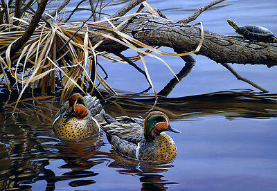 Home deco Wall art Canvas Print Ducks Oil painting HD printed on canvas L851