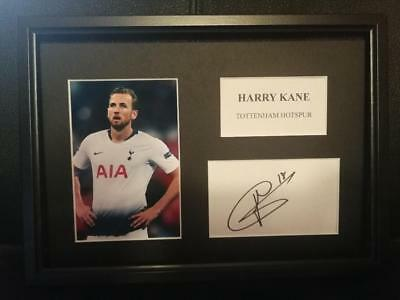 Harry Kane (Tottenham Hotspur) PRINTED SIGNED AUTO A4 PHOTO MOUNT - PRINT