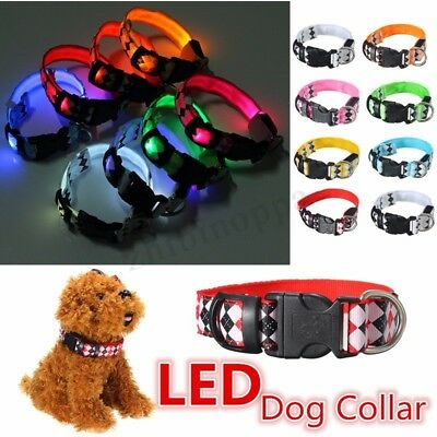 LED Dog Personalised Collar Polyester Pet Light-up Flashing Glow Safety S M L XL