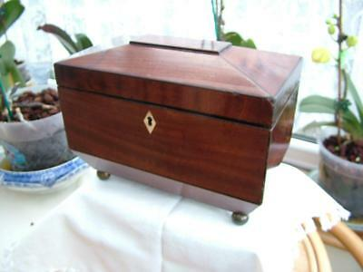 Antique Georgian Sarcophagus Flame Mahogany Two Compartment Tea Caddy.