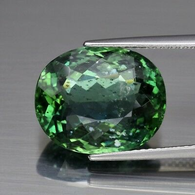 8.81ct 14.3x11.7mm Oval Natural Unheated Green Apatite, Brazil