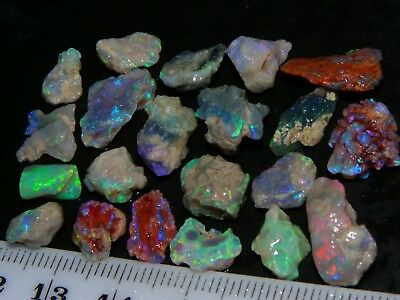 Lightning Ridge Fossil Opal Rough 44.3cts Purple/Green/Blue Fires/Inclusions NR