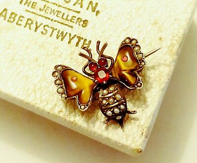 Antique 19th Century Victorian Seed Pearl and Garnet Insect Brooch