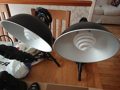 A Pre-owned Pair Of Tts Specialist Photographic Studio Lights. Light...