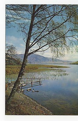 Scotland, St. Mary's Loch, Selkirkshire Old Postcard, A474