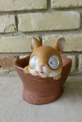 Chihuahua Planter Solar Pot Garden Home Decor Wide Open  Eyes Pot New 7 in.T