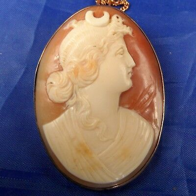Stunning Antique 9 Ct Gold Natural Carved Shell Cameo Brooch Diana / Artemis