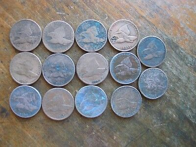 Lot Of 14 Low Grade / Cull Flying Eagle Cents With Dates No Holes Resale .99NR