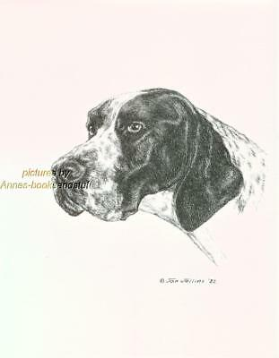 #312 ENGLISH POINTER portrait dog art print * Pen and ink drawing by Jan Jellins