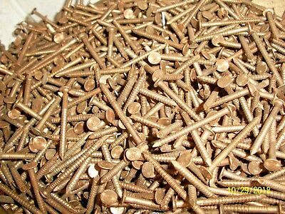 100 Old Brass Bronze 1 1 2 Long Ring Nails Boat