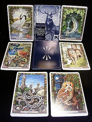 Brand New & Sealed! Druid Animal Oracle Cards & Book &  Ancient Celtic Wisdom