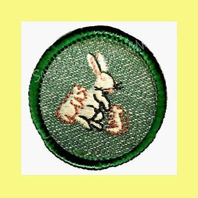 GARDEN FLOWER Girl Scout BADGE 1955 w//LIGHT Border RARE Patch REDUCED PRICE