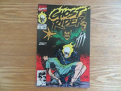 1990 Vintage Marvel Ghost Rider # 7 Signed By Mark 'tex' Texeira Art, With Poa