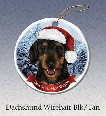 Define Naughty Ornament - Wirehaired Black and Tan Dachshund 097