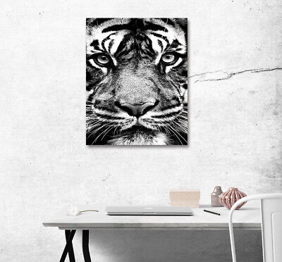 Animal Tiger Face Abstract Painting Canvas Poster Print Home Art Wall Decor