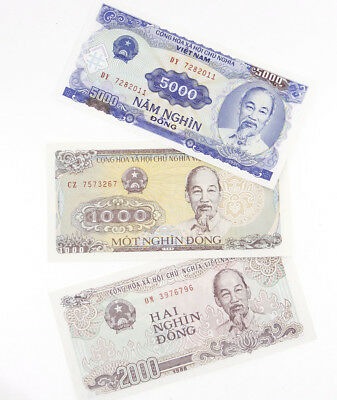 3 Pcs Vietnam 1000 2000 50,000 Dong Banknotes Currency Paper Money Uncirculated