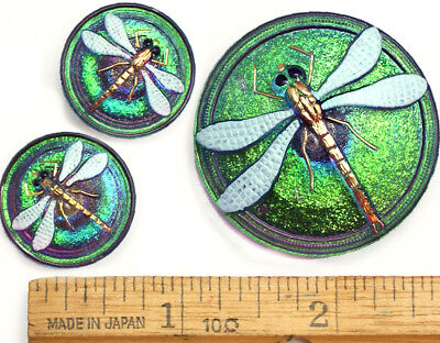 42mm 22mm Vintage Czech Glass Green FIRE AB Turquoise DRAGONFLY Buttons 3pc SET