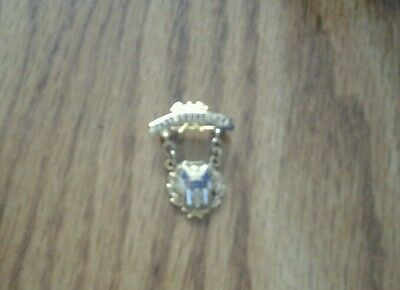 Lapel Pin Past Councilor  Daughters Of America D. Of A.