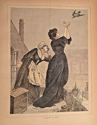 Homing Pigeon, A Friend In Need, Victorian View, Vintage 1871 Antique Art Print