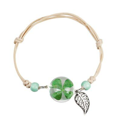 Natural Real Dried Lucky Clover Flower Glass Bracelet  Women Charm Jewelry Gift