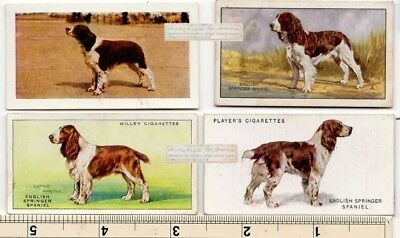 English Springer Spaniel Dogs 4 Different Vintage Ad Trade Cards 2nd