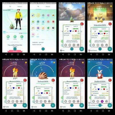 Pokemon go account lvl 30 - no Team - 8 Pokemon 100%