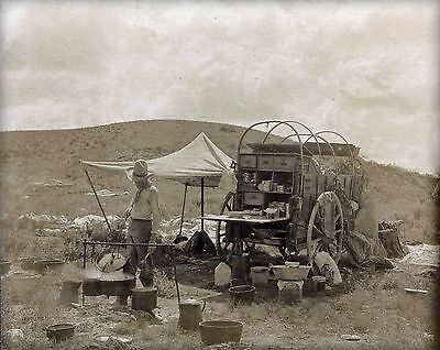 "Cowboy cooks dinner, Chuck Wagon, antique TEXAS, country life, 14""x11"" photo"
