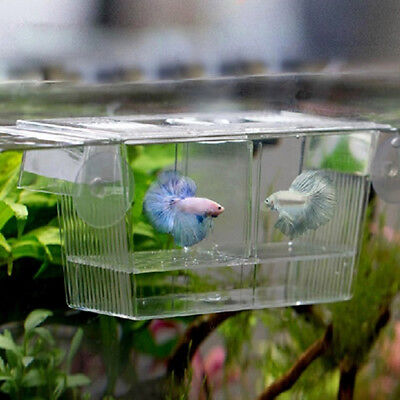 Aquarium Fish Tank Guppy Double Breeding Breeder Rearing Trap Box Hatchery Dote