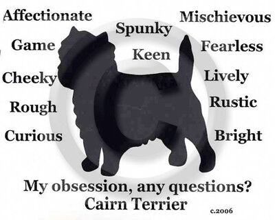 Cairn Terrier Dog My Obsession,Questions? T-shirt ,LS, or Sweatshirt