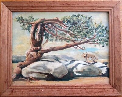 Coyote & Tree 1979 Painting/Original Art in Frame- Southwest/Dessert Scene 12x16