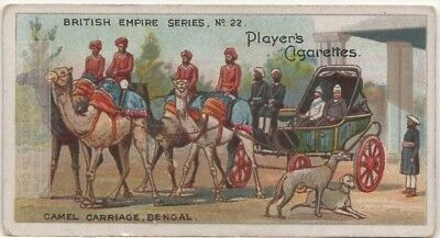 Camels Pulling Carriage Bengal Northwest India Asia100+ Y/O Ad Trade Card
