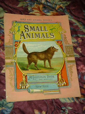 book SMALL ANIMALS bird and animal series McLoughlin bros. N.Y. antique litho