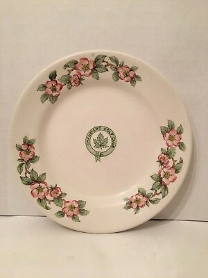 1940's Chaudiere Golf Club Grindley Hotel Ware Apple Blossom China Bread Plate