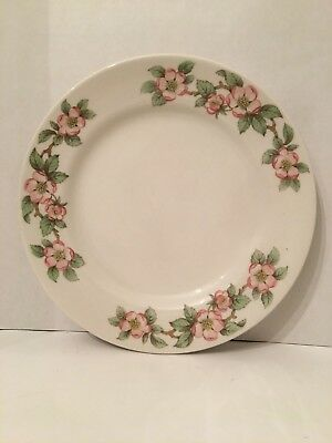 1940's Grindley Hotel Ware Apple Blossom China Dinner Plate